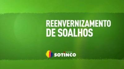 REENVERNIZAMENTO DE SOALHOS